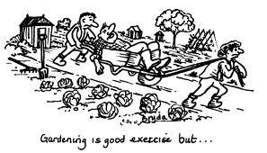 gardening cartoon