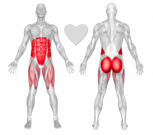 ABDOMINALS AND BUTTOCK MMS